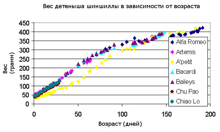Вес шиншиллы в зависимости от возраста