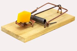 Мышеловка с кусочком сыра
