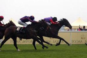 Большая скорость у коней