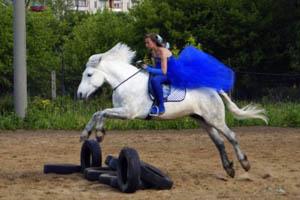 Лошадь берет барьер