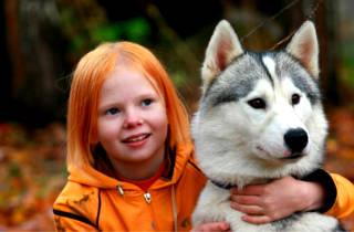 Имя крупных собак